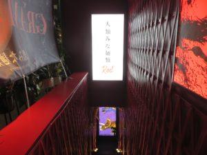 和風鰹出汁担担麺 らーめん原点(チャーシューのせ)@人類みな麺類 Red:階段