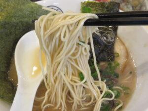 博多とんこつ 特製@LOVE la NOODLE(鎌倉駅)麺
