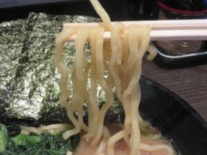 とんこつ醤油(太麺・並)@らーめん家 せんだい 町田店(町田駅)麺