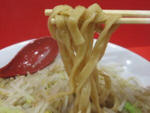 ラーメン(少なめ)@ラーメン ノックアウト(東京都足立区)麺